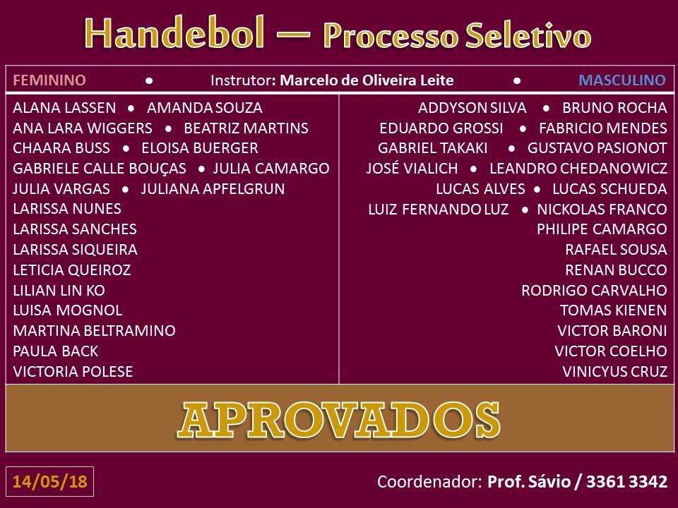 handebol-site-16-05